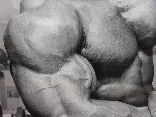 Build Bigger Arms